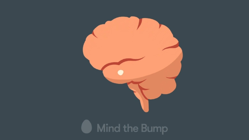 MIND THE BUMP - MINDFULNESS AND HOW THE BRAIN WORKS (3:50)