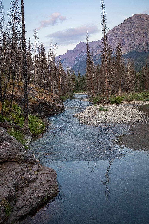 S Rochelle Photography Glacier National Park Montana 20170811-IMG_7447.jpg