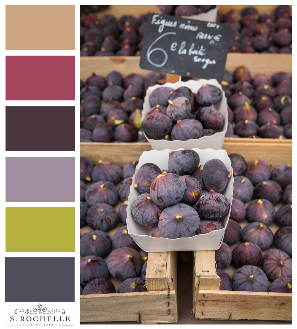Figs_Nice_France_S_Rochelle_Photography_20170922_IMG_0872_ColorPalatte.jpg