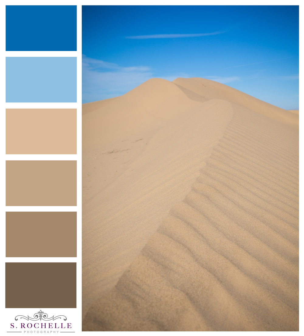 Glamis_Sand_Dunes_S_Rochelle_Photography_20160213_IMG_0684_ColorPalette.jpg