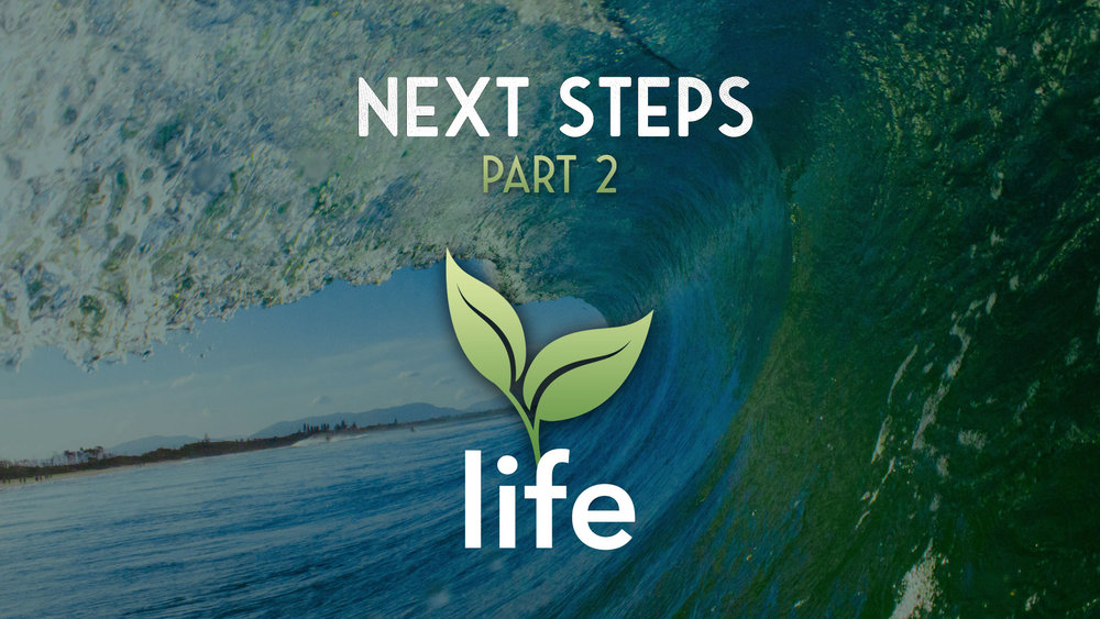 Next-Steps-Part-2