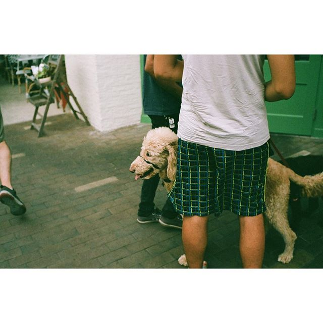 Leica M6 | Portra 400 —————————— #womeninstreet #womanphotographer #35mm_look #bestfilmphoto #streetfeat #streetphotography #streetlife #leicam6 #leicam6ttl #leicauser #filmisnotdead #analogphotography #ishootfilm #35mmfilm #filmcamera #buyfilmnotmegapixels #filmshooter #filmphotography #analoguepeople  #framed_legit #myfeatureshoot #somewheremagazine #theanalogclub #photofilmy #portra400 #kodakportra400