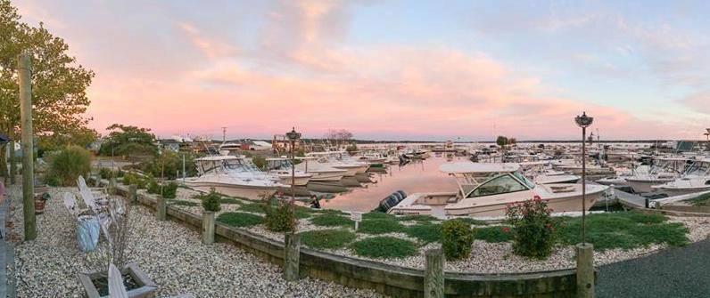 pink sky marina.jpg