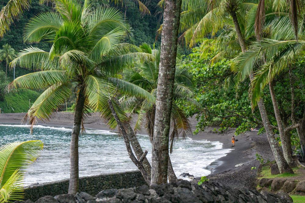 Black Sand Beach - Featured in US News & World Report