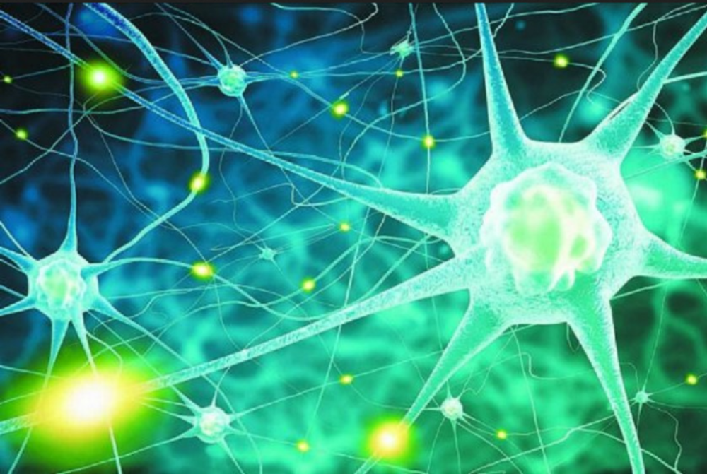 Astrocytes : your brain stars. Here shown signaling with calcium messages to each other.