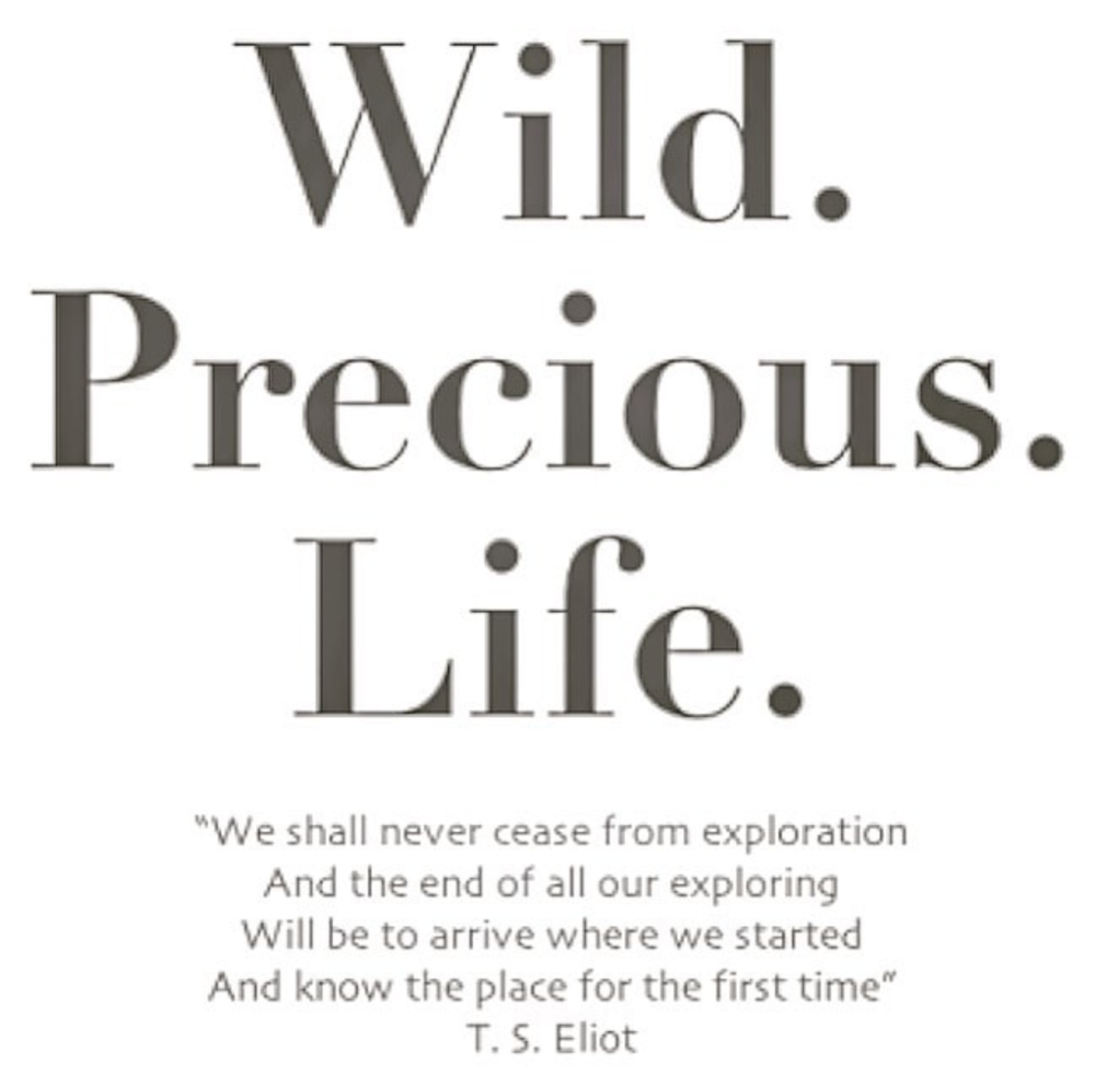 Wild Precious Life TS Eliot