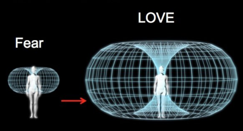 The electromagnetic field of the heart varies with different emotions. PC: screenshot from Dr. Diana Quinn's blog.