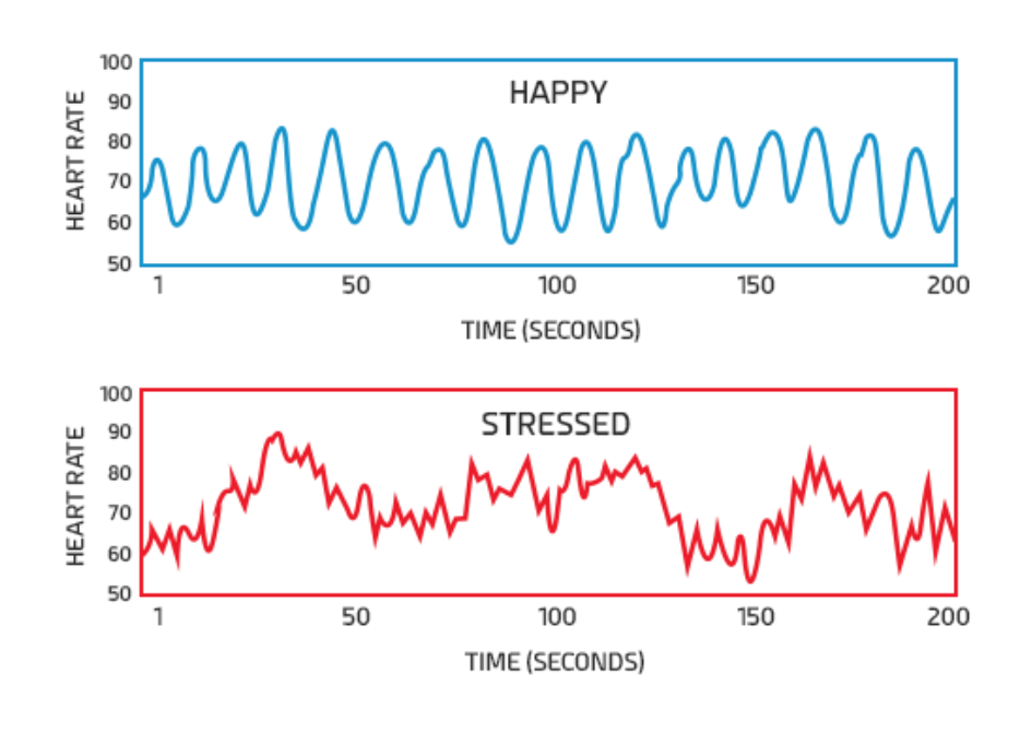 Changes in heart rate when different emotions            are present. PC: Sports Medicine Weekly