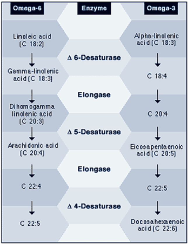 PC: Chart from the Institute of Traditional Medicine:  article on how to reduce inflammation through eicaosanoids