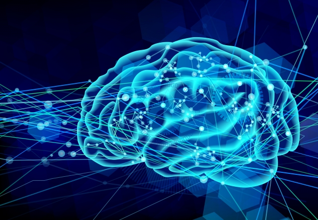 Your precious elegant powerful brain. PC: Random pinterest find.