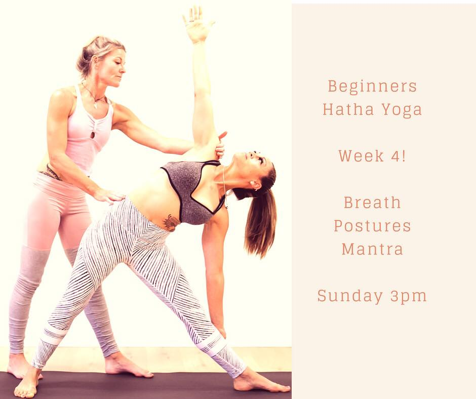 The final week in our four week beginners block. Join us every Sunday 3pm if you are totally new to Yoga, have ailments, or just need to straighten up and improve your flexibility. Our classes include props and mats are available.