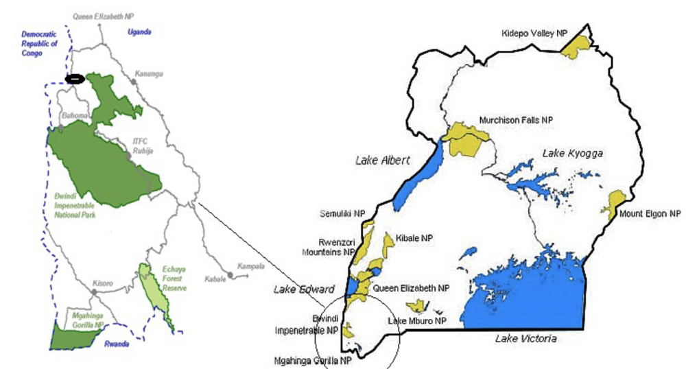 The location of the Batwa in Uganda with an extraction on the left showing the protected areas- BINP, MGNP, EFR     Source:  Mukasa, 2014 – Adapted
