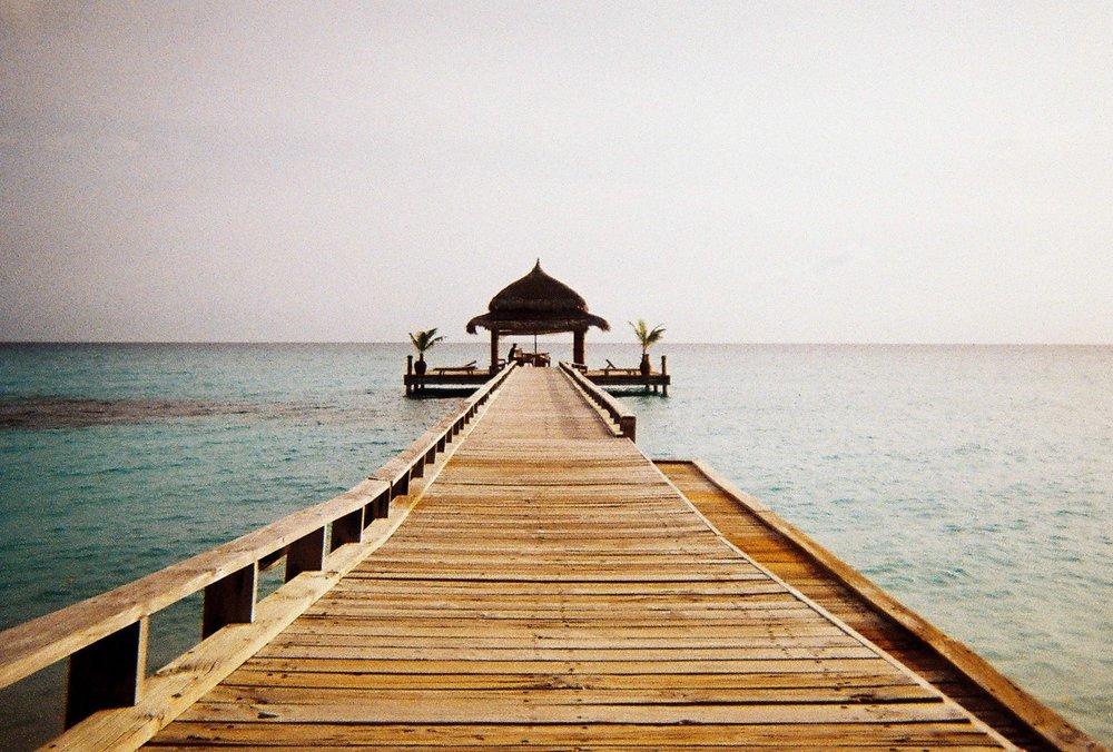 Liberté - Vous pouvez vous concentrer sur l'essentiel, vos rencontres et votre vie. Abricot se charge de tout le reste.