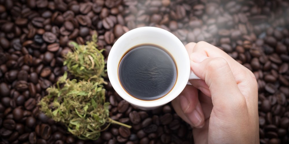 Coffee and Cannabis are two staples in our culture, having both of these in your daily routine has surprising effects! (Credit: Shutterstock)