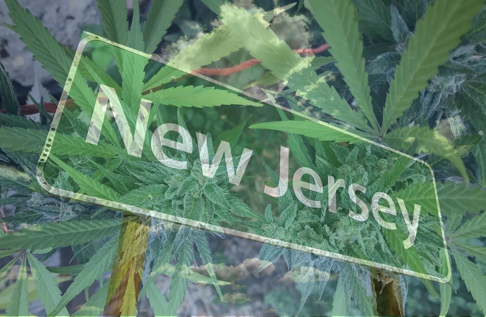 New-Jersey-Adjourns-All-Cannabis-Cases-Until-September.jpg