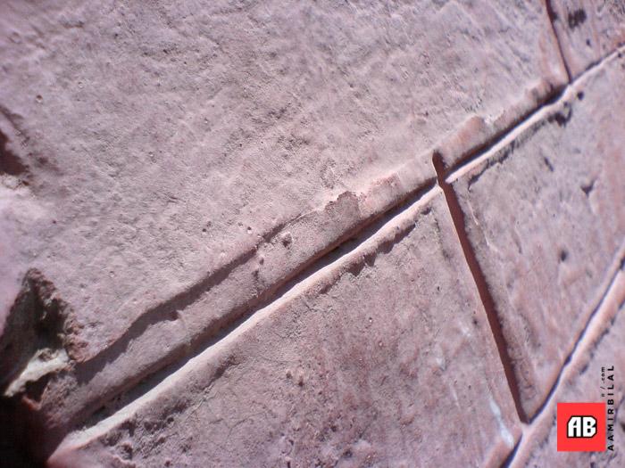 2006-04-11-13-02-33_SE_W800i_SQSP.jpg