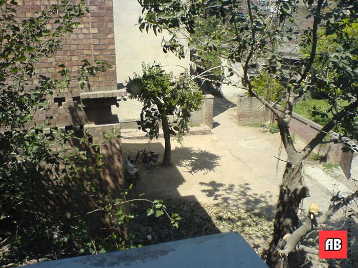 2006-04-12-13-01-54_SE_W800i_SQSP.jpg
