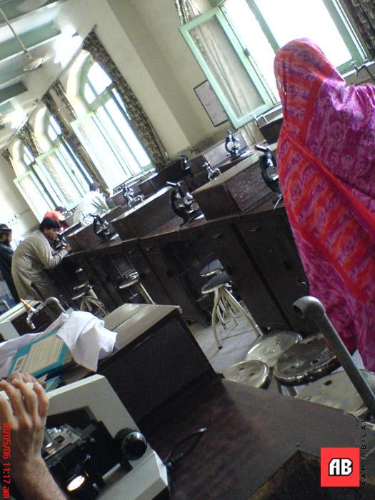 2006-05-18-11-17-03_SE_W800i_SQSP.jpg