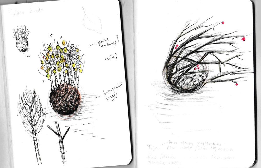sketches).jpg