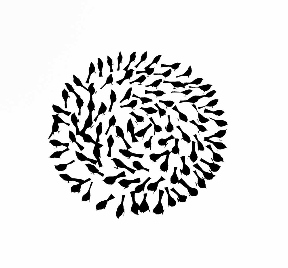 """Flock Circle: Screen Print based on """"Where have all the sparrows gone"""""""