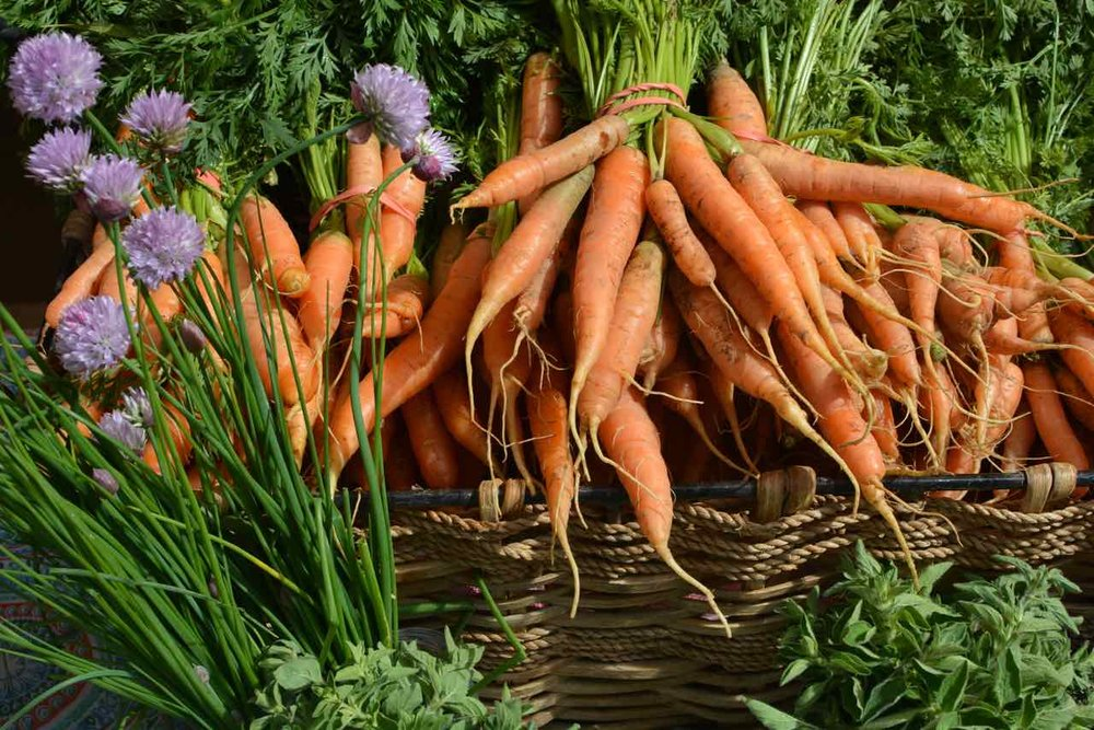Seasonal Produce - This site is great for finding local seasonal produce from a farm