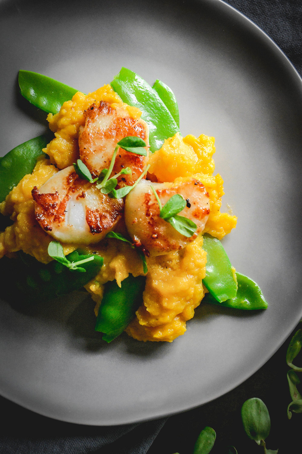 Scallops with butternut squash puree and snow peas