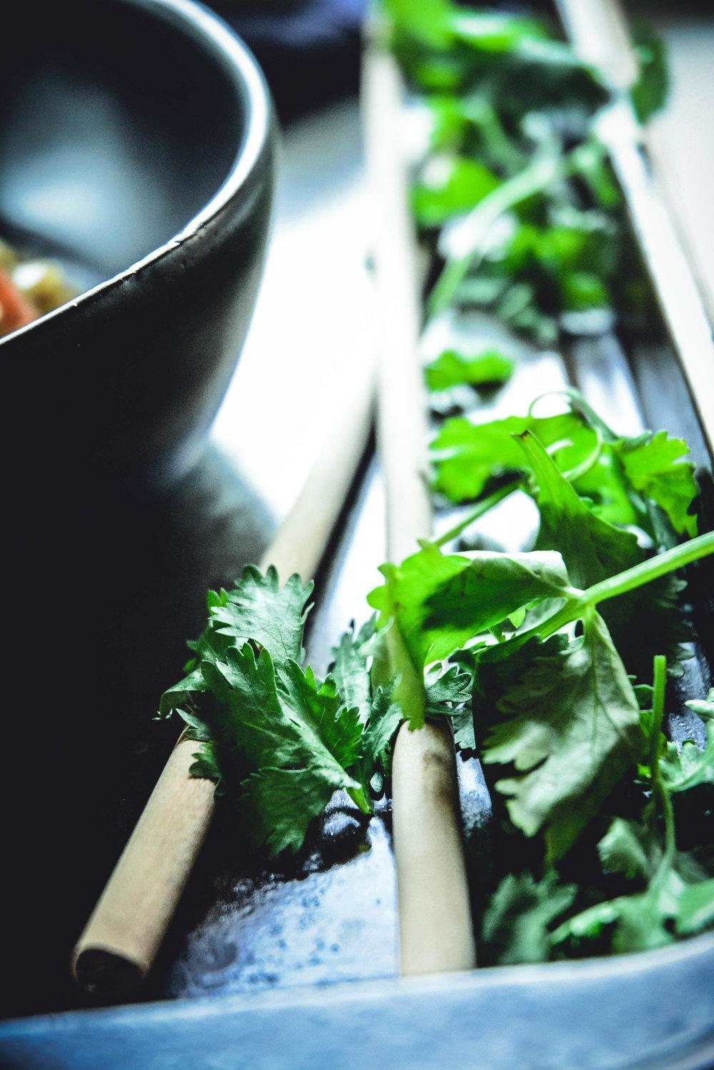 chopsticks and cilantro