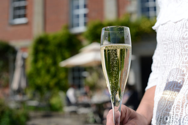 12.30pmEnglish Sparkling WinePanel of English Sparkling producers - We'll hear straight from the horses' mouths why English Sparkling is proving to be such a hit on the wine awards circuit and what the future holds for this effervescent product.