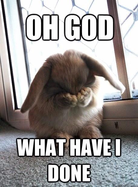 guilty bunny.jpg