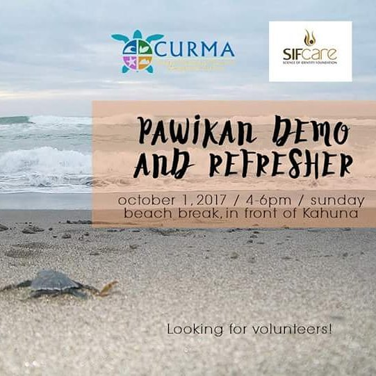 Looking for volunteers! Turtle Season is from September to March. 🐢 Join our Pawikan Refresher this Sunday, Oct 1. See you on the beach in front of Kahuna Resort from 4-6pm!  #sifcare #curma #sjrhass #colormanila #launionsoul #launionsurfclub #turtles