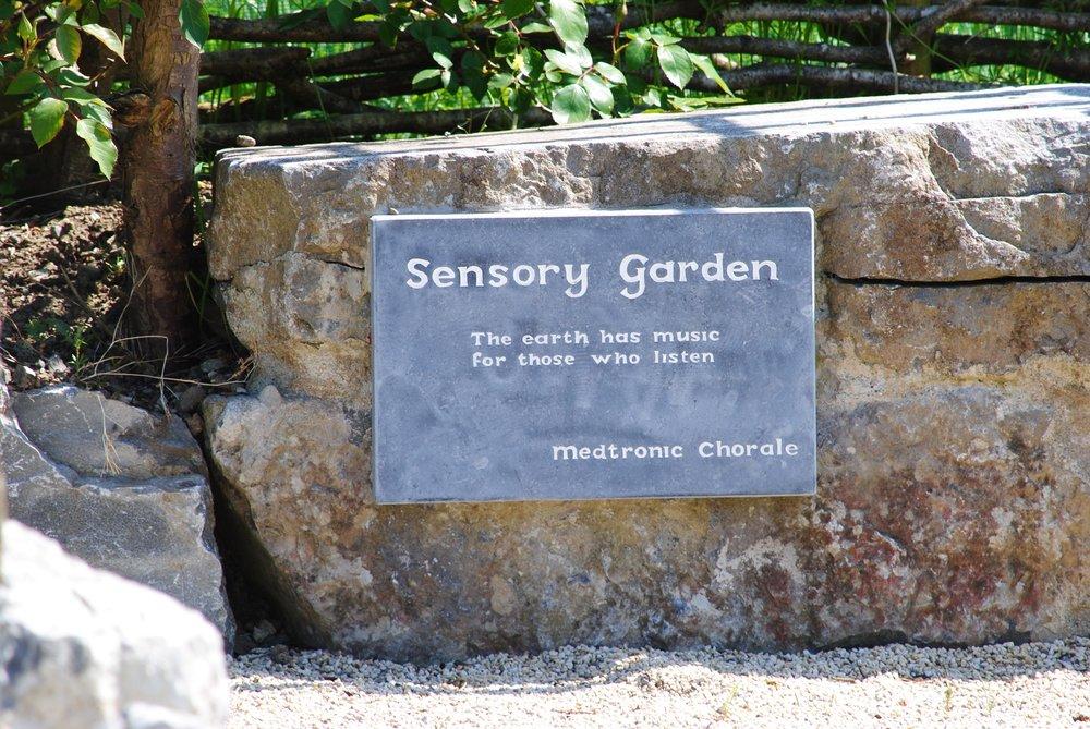 Garden design in Galway City