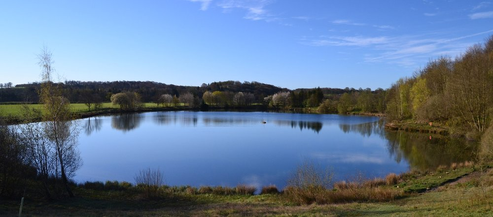 Tanfield Lake News
