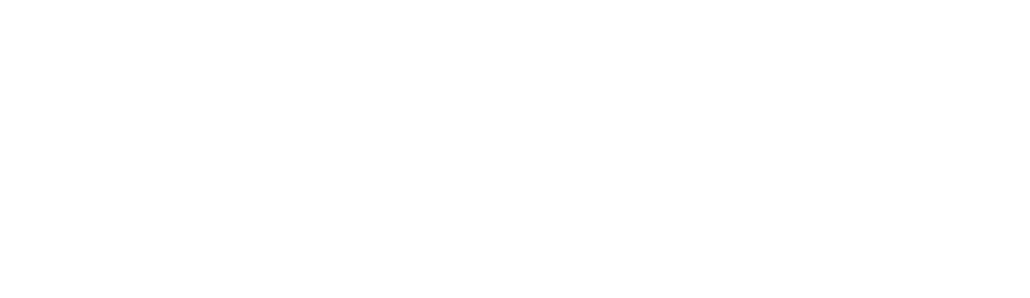 Robert A. Nowicki & Associates