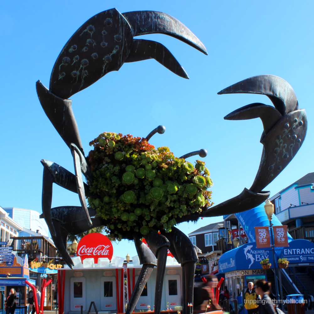 Fishermanswharf1.png