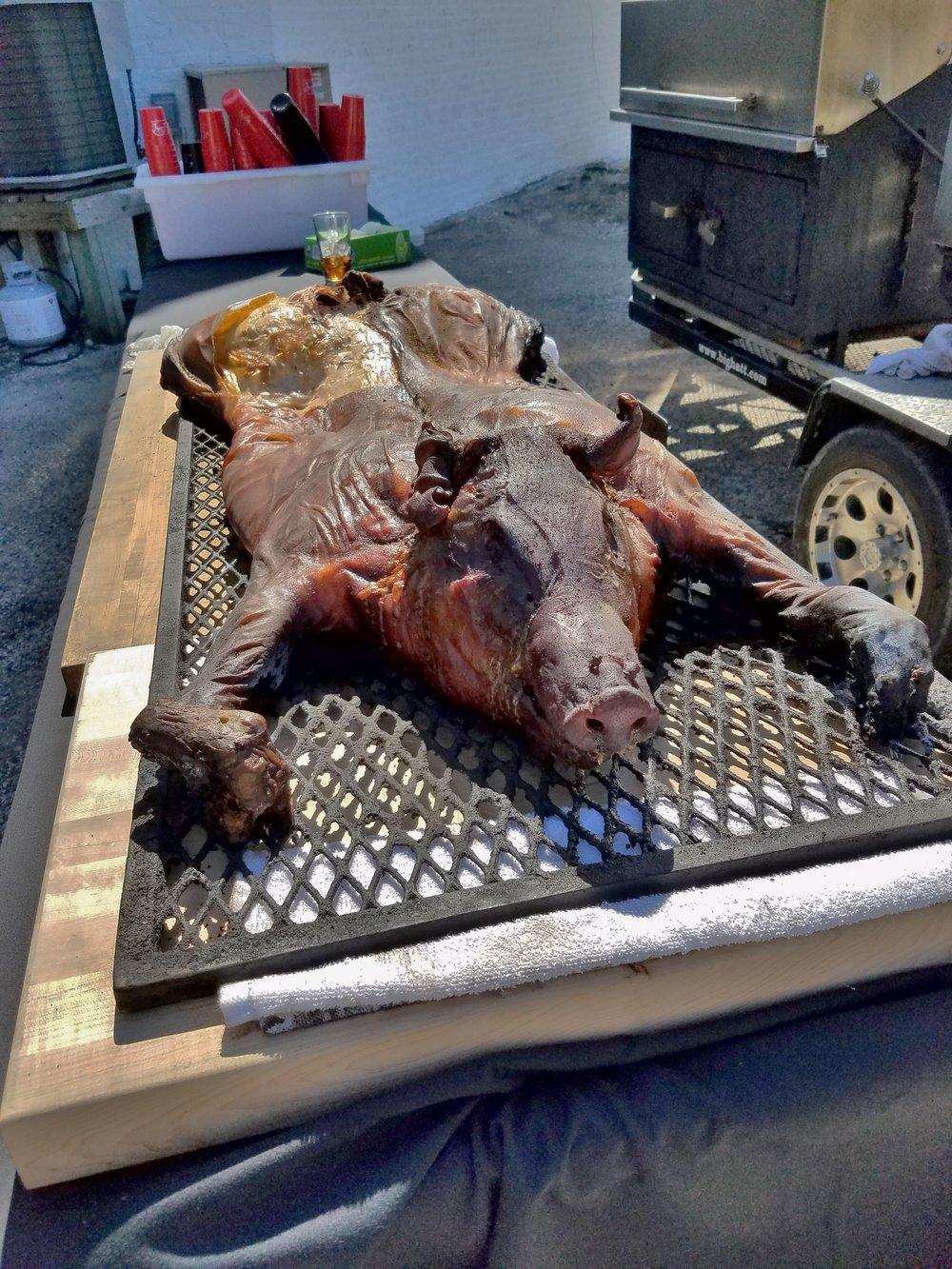 Pig, DOA (2).jpg