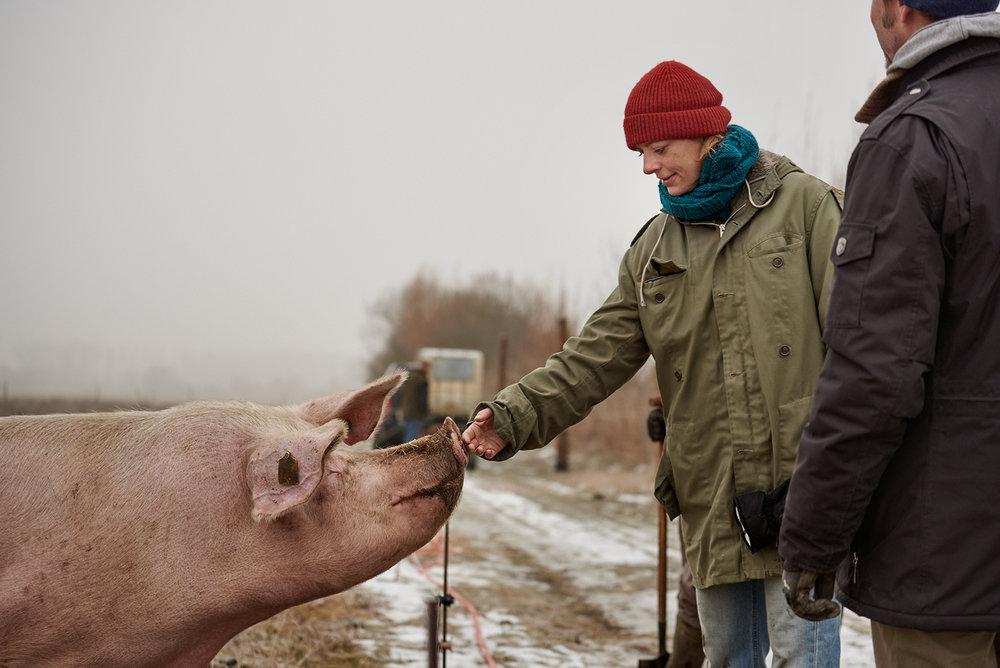 Artgerechte-Tierhaltung-Potsdam
