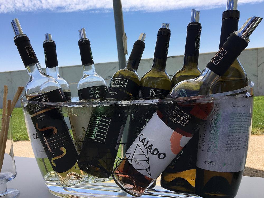 Winetasting Portugal Alentejo