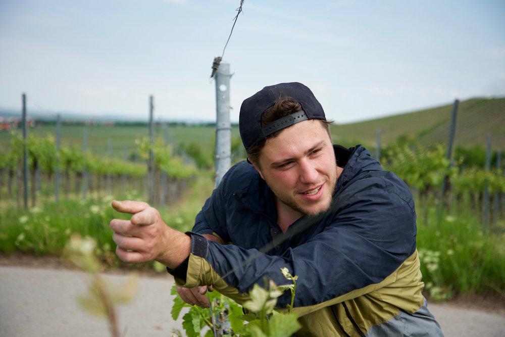 Weinverkostung mit Winzer Andi Weigand bei kulinarischer Brotzeit - 24.10.2018, 19Uhr Andi paart fränkische Weintradition mit vielen frischen Ideen und jeder Menge Weintalent. Das Ergebnis sind großartige