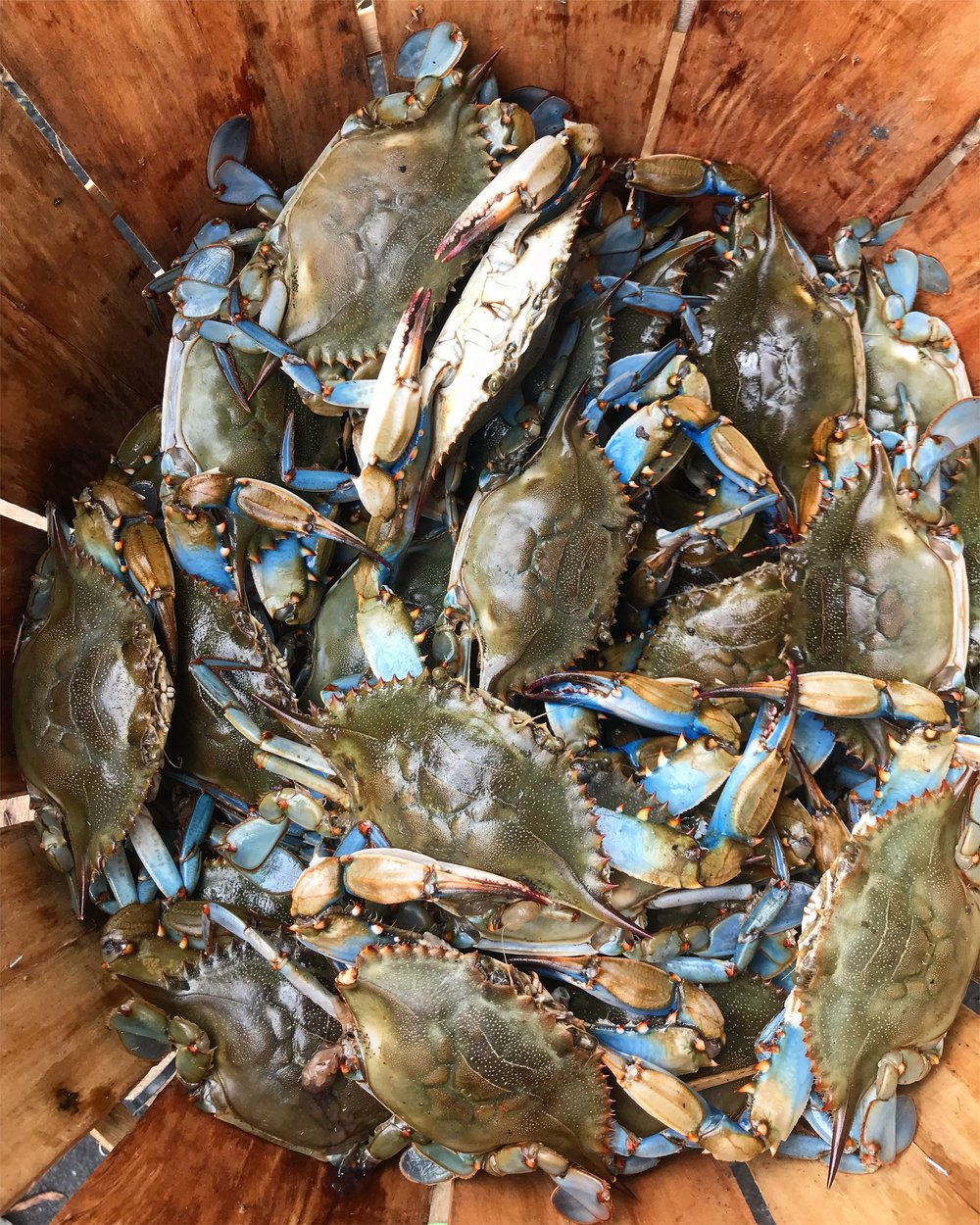 How to Boil Blue Crabs The Full Table Blog 1