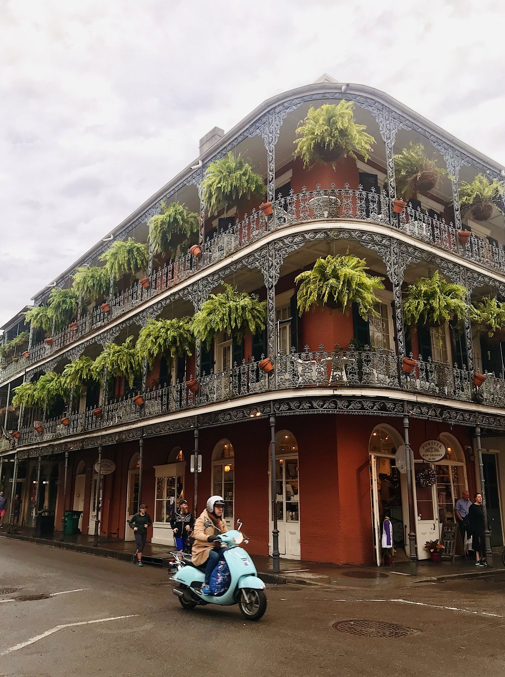 The picturesque streets of New Orleans