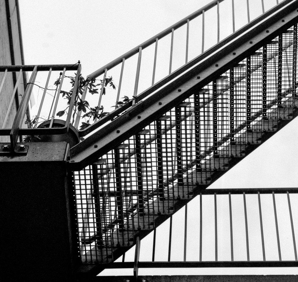 Week 38 - Amsterdam-002.jpg