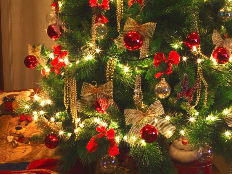 Wann Wurde Der Geschmückte Weihnachtsbaum Populär.2 Advent Der Weihnachtsbaum Pantera Nera