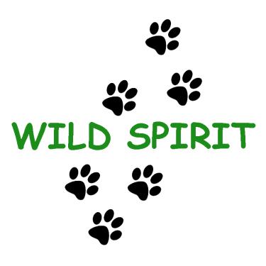 Wild Spirit Education