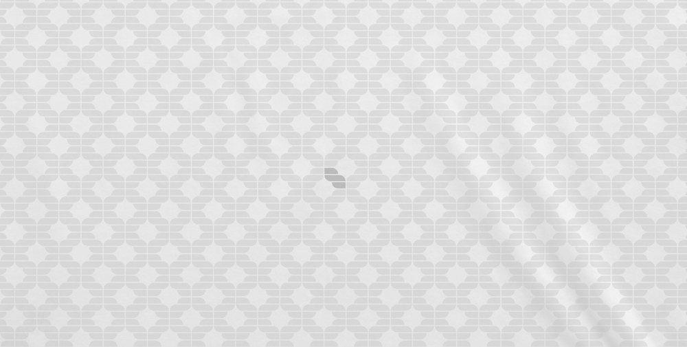 SALMONI INK - BRAND GUIDELINES_5.jpg