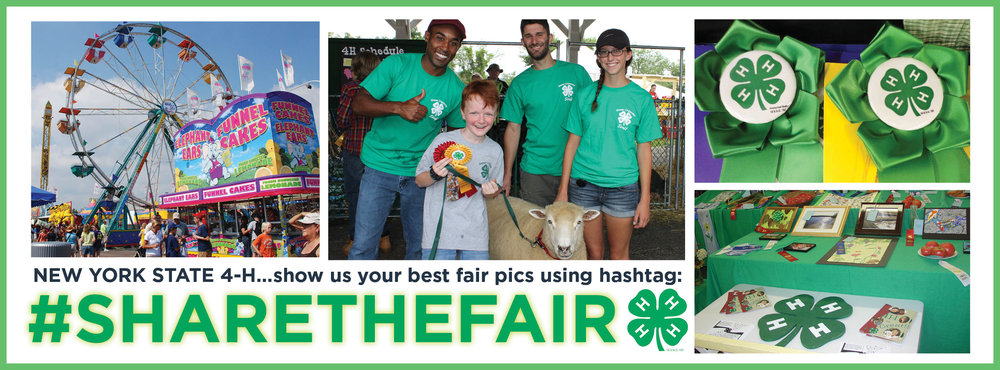 NYS 4H Fair Season.jpg