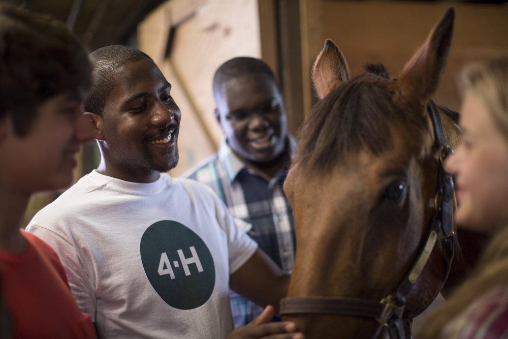 4-H Ag - Horse.jpg