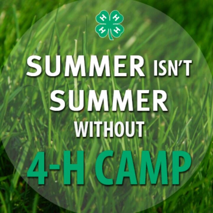 4-H Summer Camp.jpg