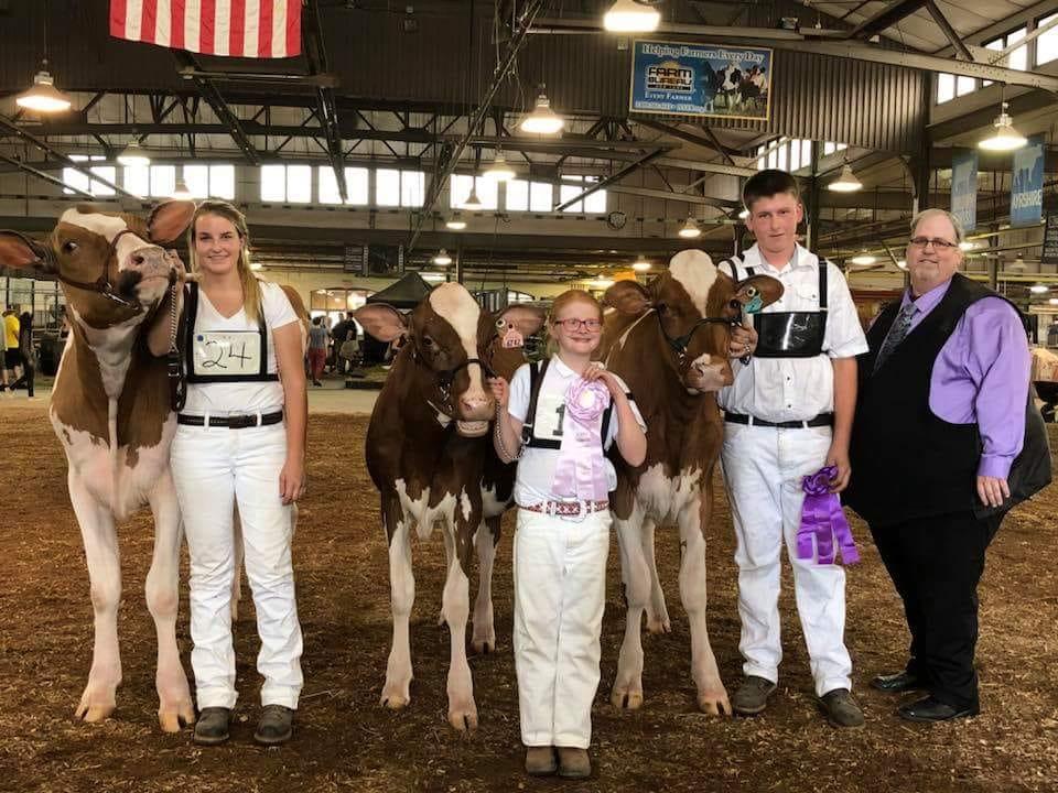 Broome County - Cows.jpg