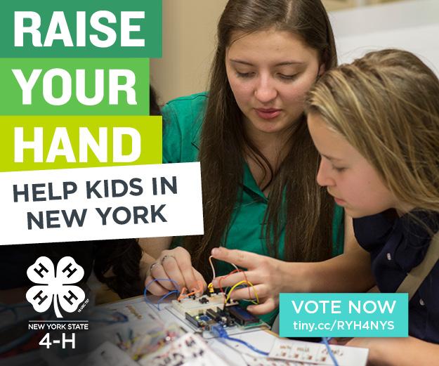 NYRYH - 300x250 - Help Kids17.jpg