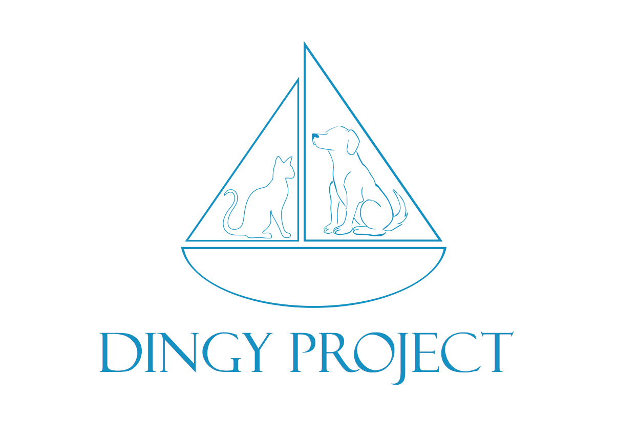 Dingy Project